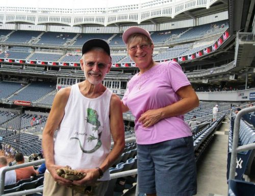 Yankee Baseball Trip July 31, 2019