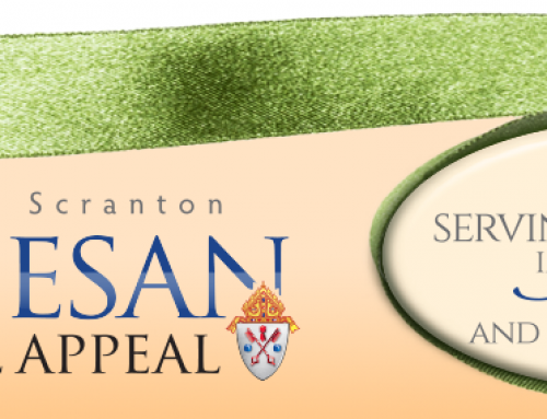 Diocesan Annual Appeal 2019